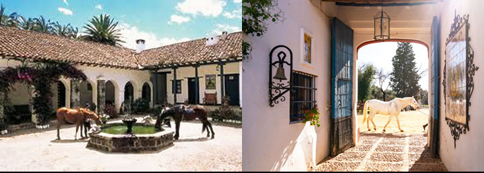 Andalusian stable